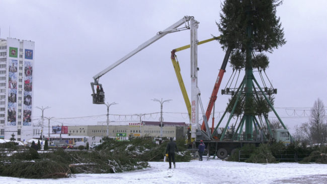ustanovka jolki 650x366 - Как Витебск готовится к Новому году? (видео)
