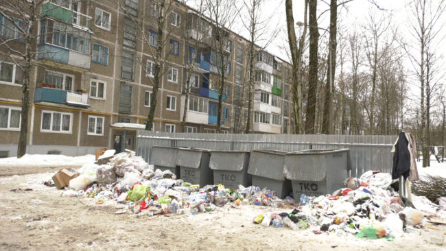 jekologi 650x366 - Экологи Витебской области наметили планы на 2020-й год (видео)