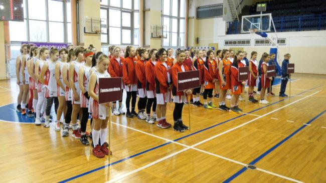 basktebol 650x366 - Витебские баскетболистки на 2-ом месте республиканского первенства (видео)
