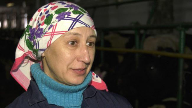 dojarka 650x366 - Наталья Бахир - одна из лучших операторов машинного доения Витебской области (видео)