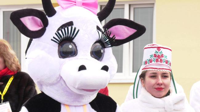 ferma 650x366 - Под Витебском открыли суперсовременный молочно-товарный комплекс (видео)