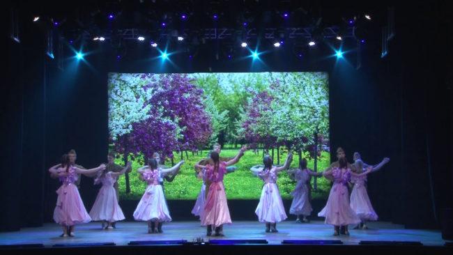 vals 650x366 - Вечер вальса в Новополоцке посвятили 75-летию Победы (видео)