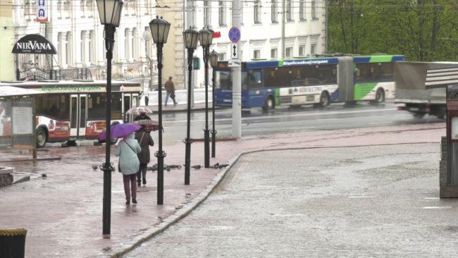 zima 650x366 - Дуновение зимы (видео)