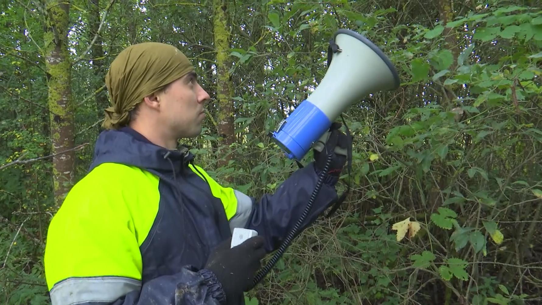 mchs - С начала года спасатели области вывели из леса более двух десятков заблудившихся (видео)